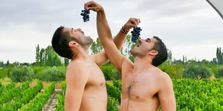 Gay travellers to Mendoza should not miss out on visiting the local vineyards.