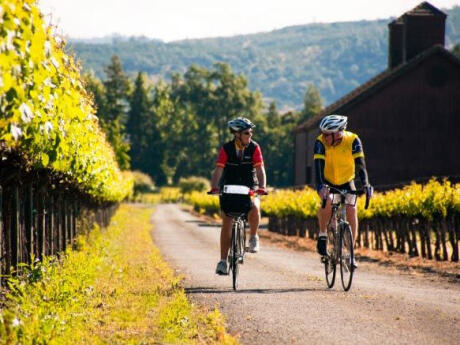 A fun way to explore Mendoza's wineries is to hire a bike and ride to them!