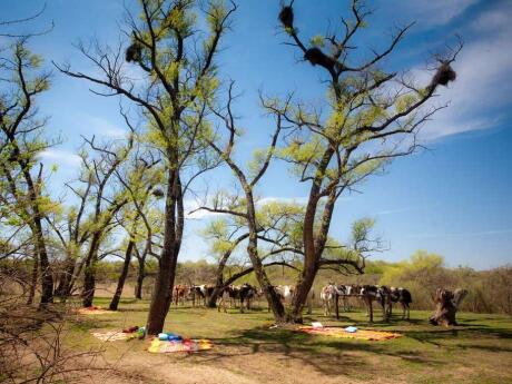 Horse-riding is just one way you can enjoy the area around El Colibri Estancia