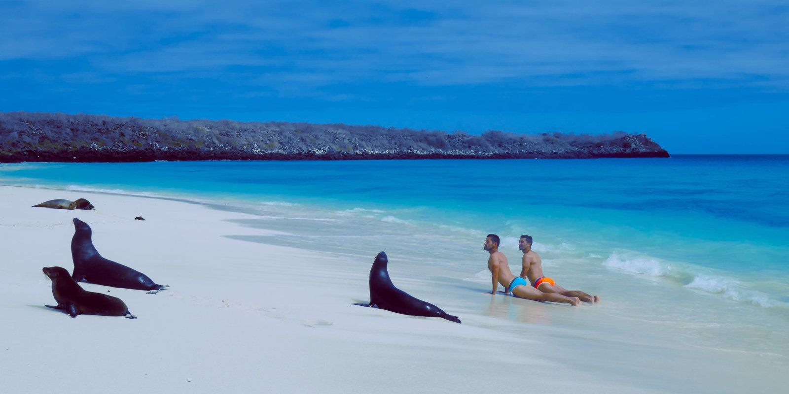 Doing your morning yoga with sea lions on the beach during your gay cruise to the Galapagos with Intrepid