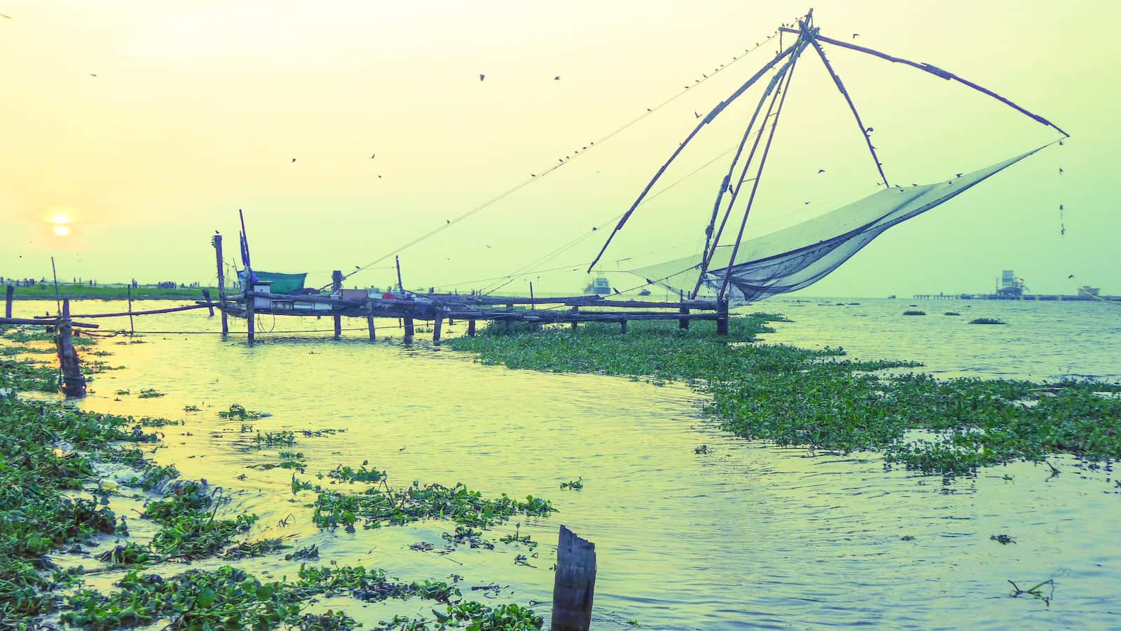Chinese fishing nets at Kochi old port at sunset