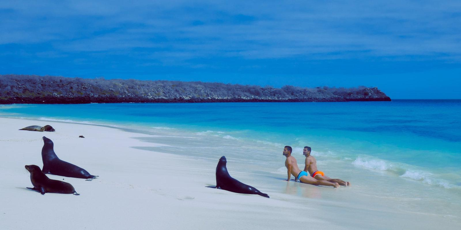 Adventurous gay travellers will love exploring the Galapagos Islands on an exclusive gay cruise