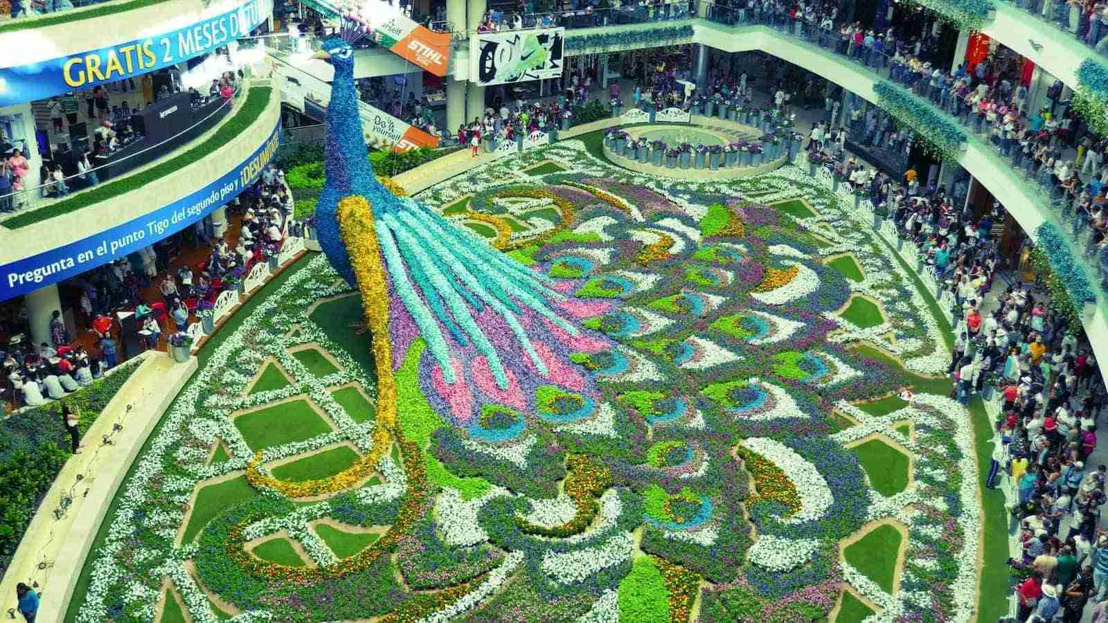 The Medellin Flower Festival is an incredible celebration of Colombian flowers and culture