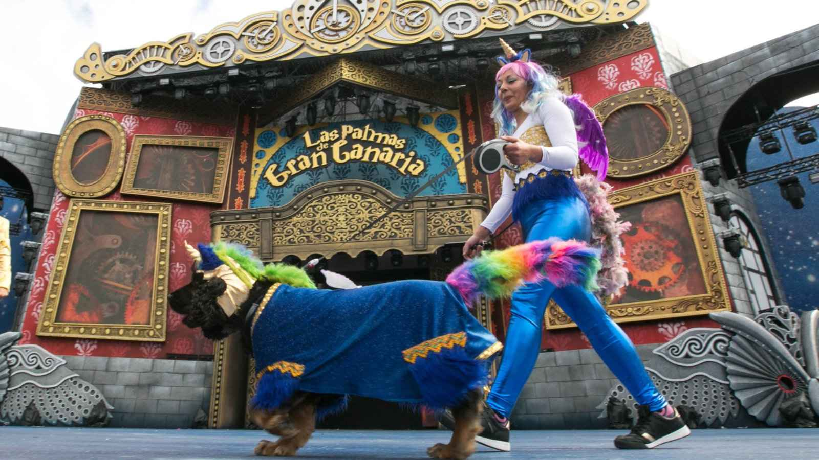 Carnival is an awesome celebration to experience in Gran Canaria, especially if you attend the special canine carnival costume contest!