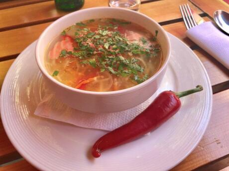 Zeama is a traditional Moldovan type of chicken noodle soup that's known as the ultimate hangover cure!