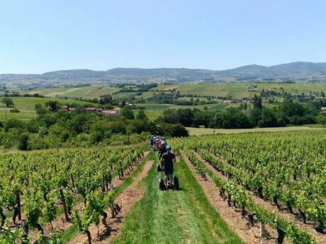 Explore the wineries in the region surrounding Lyon to sample some excellent wines, and on a segway too!