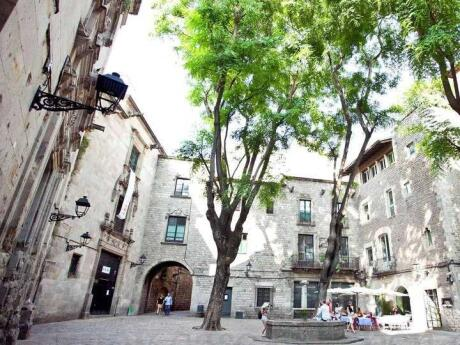 If you want to learn about Barcelona's history and see the most beautiful architecture, join a walking tour of the Gothic Quarter