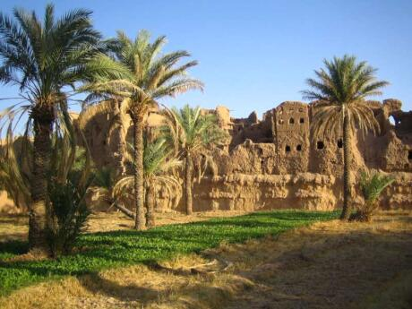If you want to experience a true desert oasis in Iran, head to the village of Garmeh