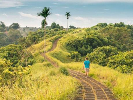 The Campuhan Ridge Walk is an interesting experience and a lovely way to enjoy the Balinese landscape near Ubud