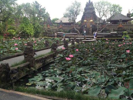 The Pura Taman Saraswati is one of Bali's most beautiful temples and gorgeous for some photos with water lilies