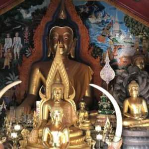 If you're in Chiang Mai in Thailand you must spend some time visiting the stunning Buddhist temples