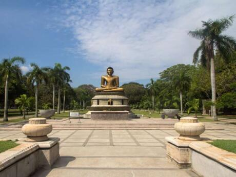 Viharamahadevi Park is the largest park in Colombo with lots of green spaces for relaxing