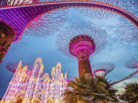 Gardens by the Bay is one of the most beautiful and most popular attractions in Singapore, they're definitely a must-see though!