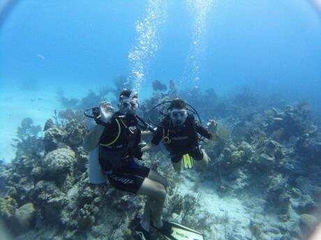 The Maldives is an absolute paradise for scuba diving, whether you're a total beginner or a pro!