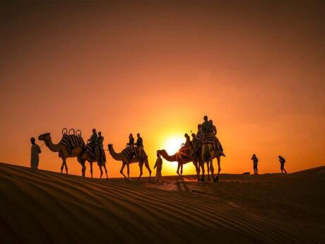 Enquanto você estiver em Abu Dhabi, terá que experimentar um safari nas dunas e um jantar romântico no deserto!