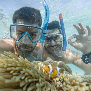 Snorkelling in the tropical water and seeing beauiful corals and fish