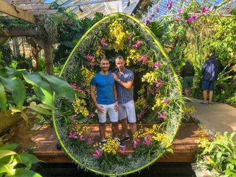 Need some floral backgrounds for your Insta photos? Make sure you visit the stunning Marie Selby Botanical gardens in Sarasota