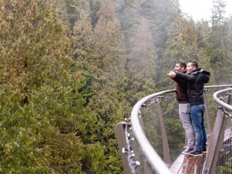 Get out into nature by walking on the suspension bridge at Capilano park near Vancouver