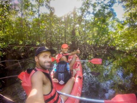 Sarasota has some unique mangrove tunnels which are fascinating to discover while kayaking