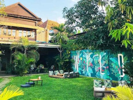WILD is a lovely spot for cocktails and spring rolls in Siem Reap