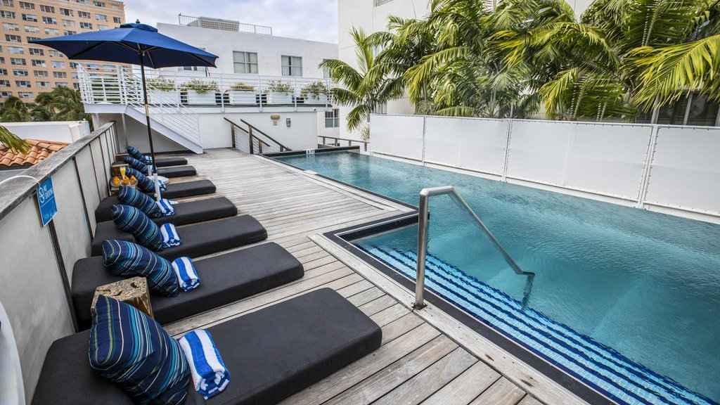 Os viajantes gays em Miami vão adorar o Posh Hostel South Beach, especialmente sua piscina na cobertura!