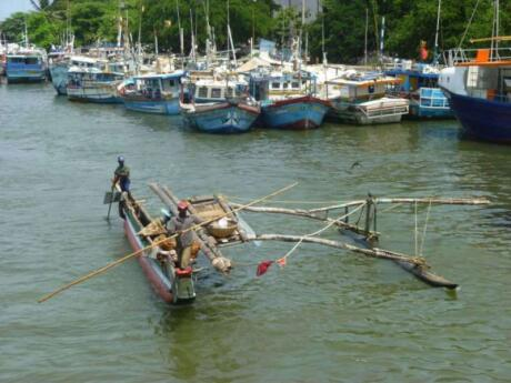 Gay travellers to Negombo will enjoy exploring the local fish markets or even joining a fishing trip