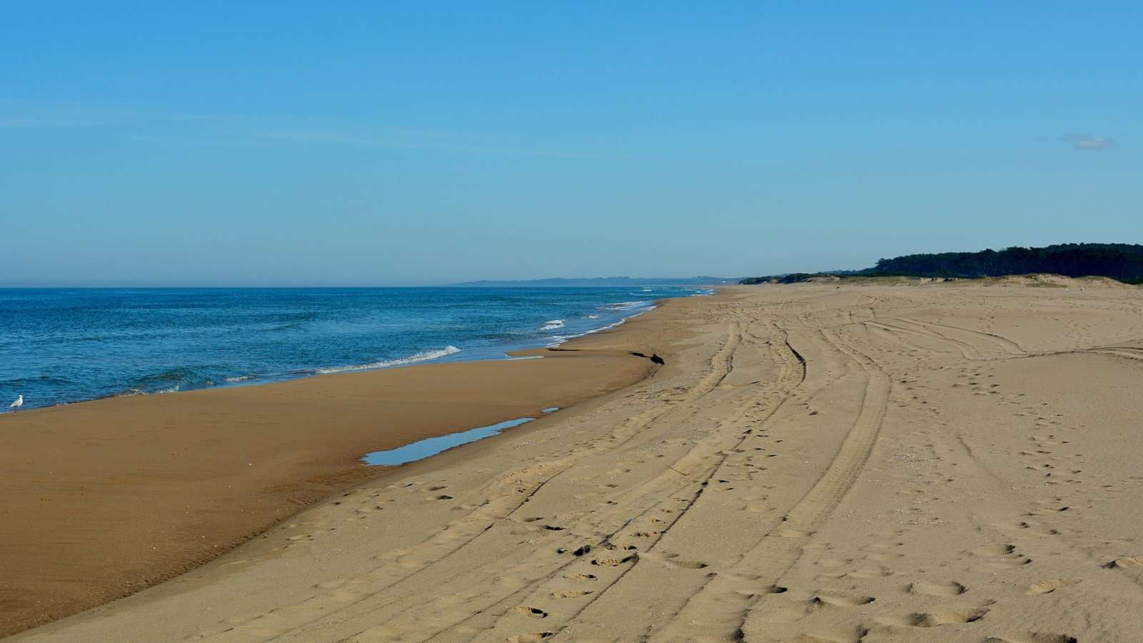 Uruguay's clothing optional Chihuahua Beach can be found outside Punta del Este