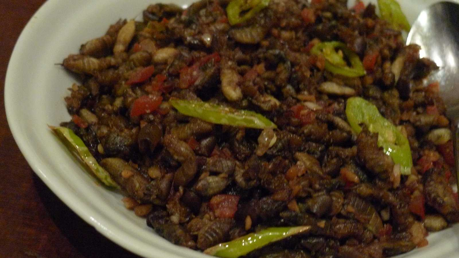 In some parts of the Philippines, crickets are a popular dish as they're cheap and packed with protein