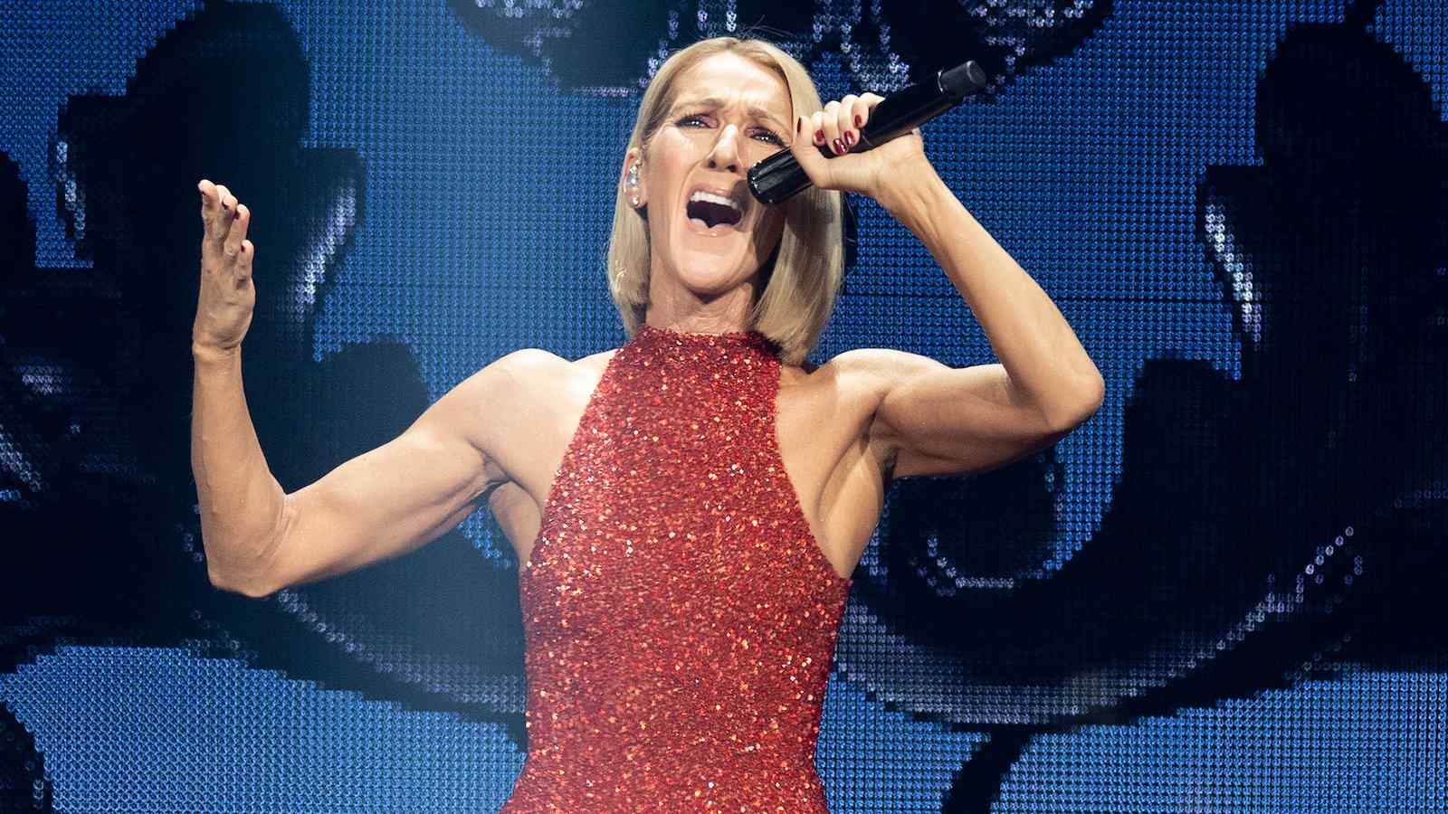 Celine Dion sings about loving a gay friend and shows us all she's a gay icon