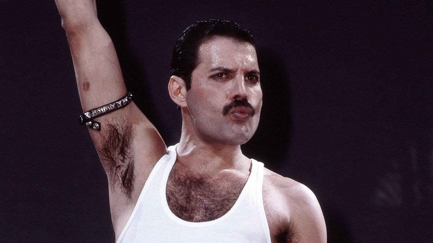 Freddie Mercury was the lead singer of Queen and a gay British icon