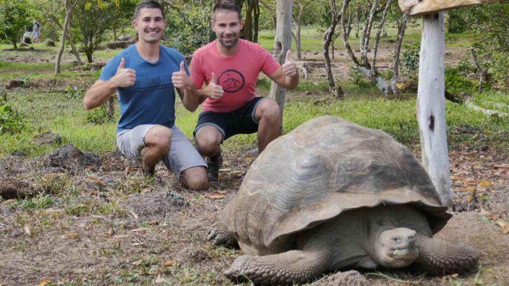 Galapagos biggest species of tortoise