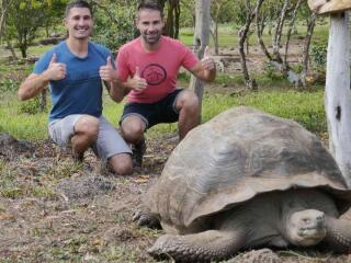 The biggest species of tortoise in the world is the Galapagos Tortoise from the Galapagos Islands