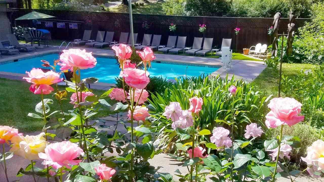 Os belos jardins são apenas parte do que torna o Highlands Resort um dos melhores acampamentos gays dos EUA.
