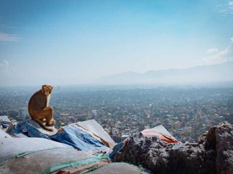 Você não pode visitar o Nepal e não passar algum tempo na caótica e colorida Kathmandu!
