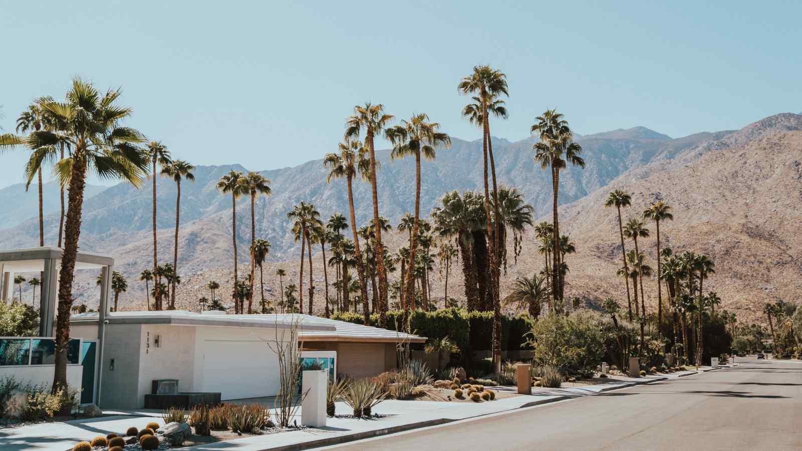 Há mais o que fazer em Palm Springs do que apenas relaxar na piscina