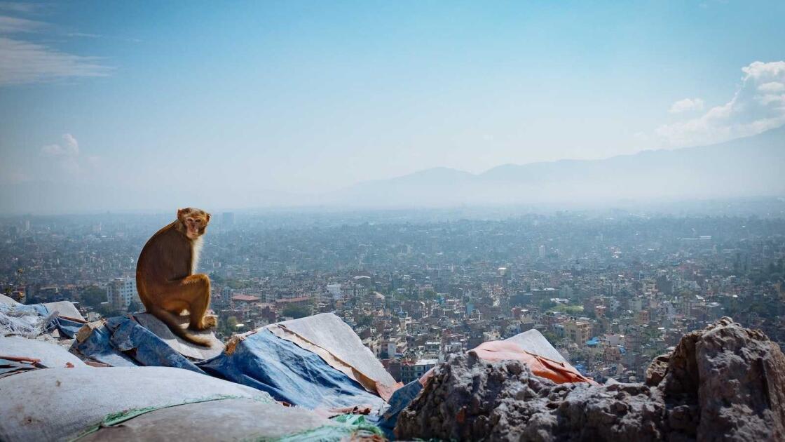 Kathmandu gay travel guide