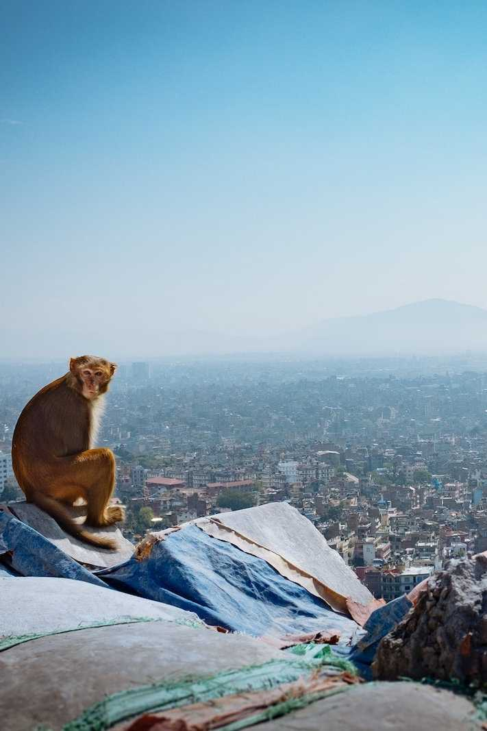 Check out our gay guide to Kathmandu with all the best things to do and places to stay