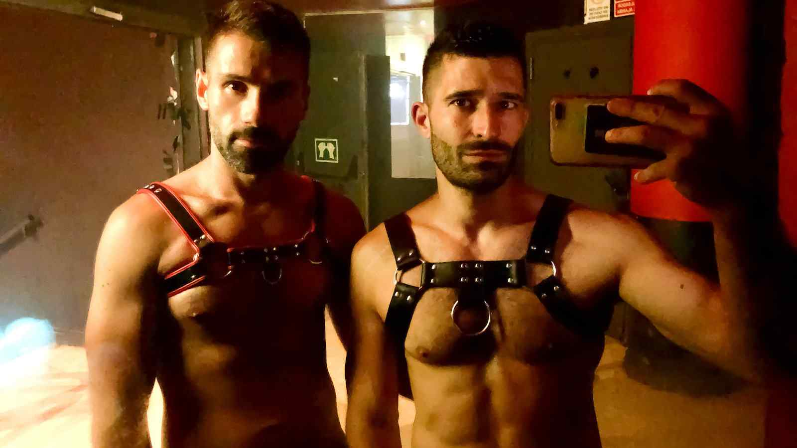 Harnesses are one type of sex toy you can travel with fairly easily
