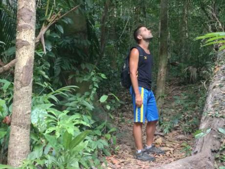 A fun thing to do on Koh Tarutao is hike through the jungle