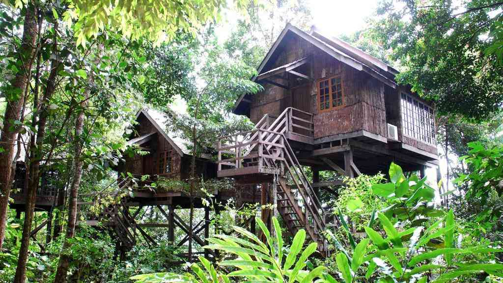 You can camp or sleep in treehouses during the Rainforest World Music Festival if you stay at the Permai Rainforest Resort